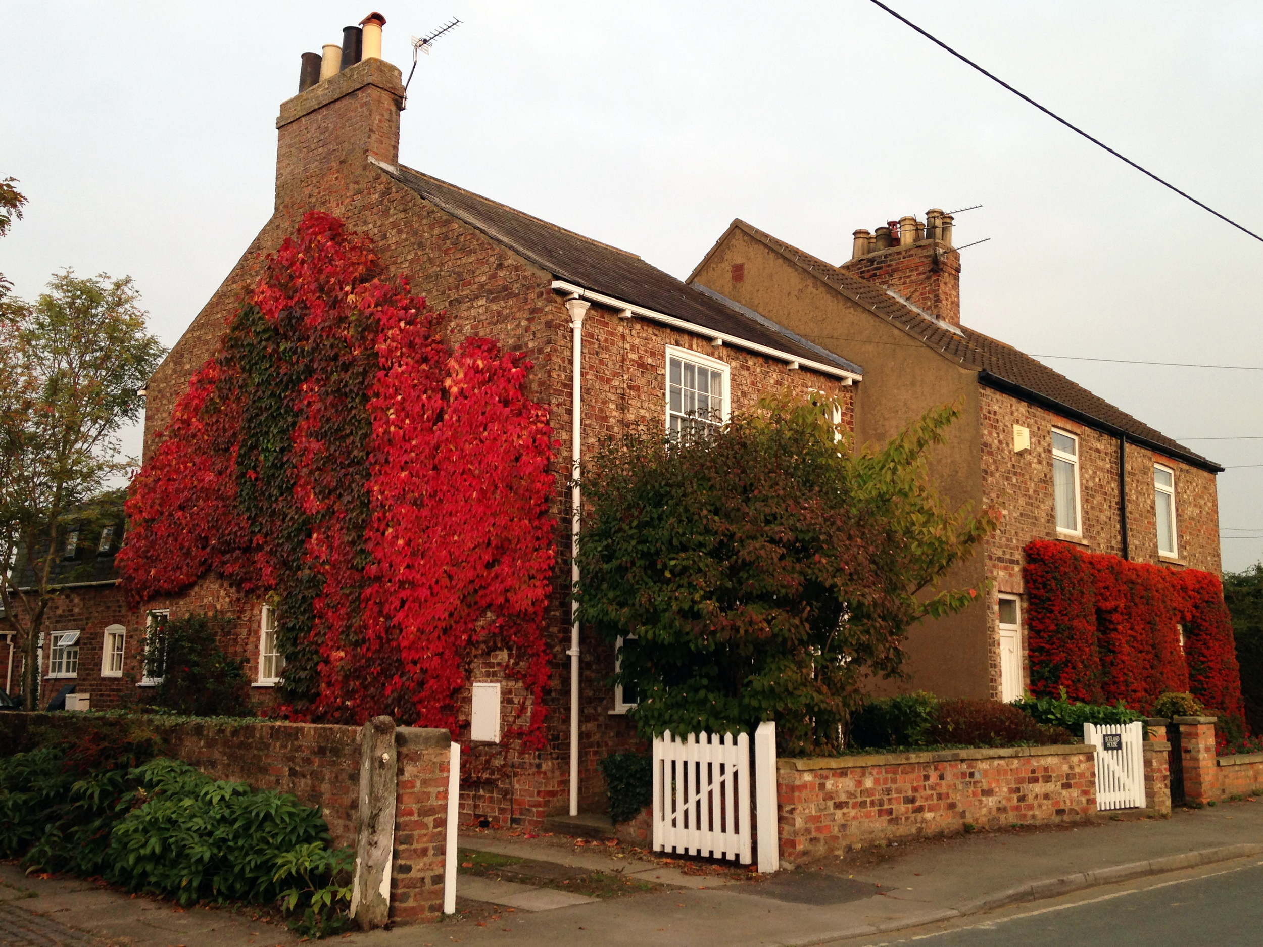 House With Red and Orange Ivy York England UK