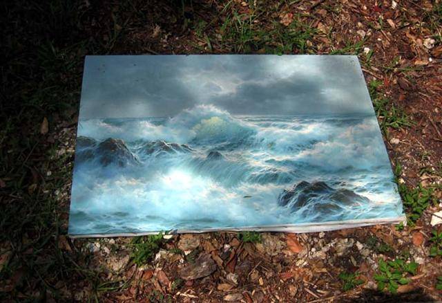 """Seascape on the Grass (Miami, FL.), 2007. From the series """"Found Objects""""."""