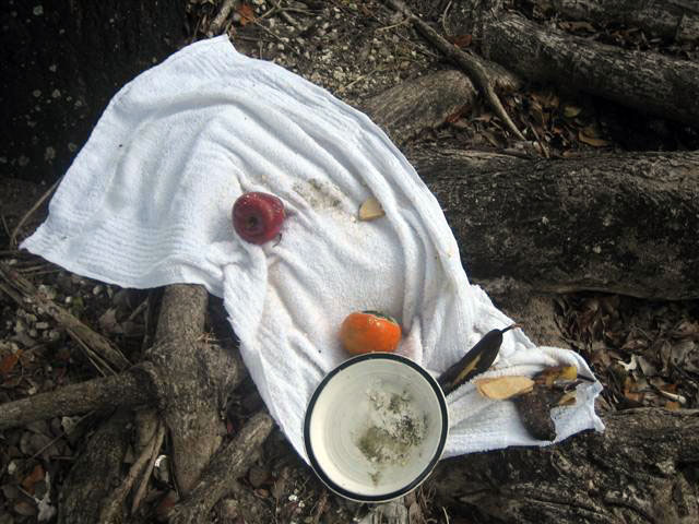 """Offering on Roots (Miami, FL.), 2008. From the series """"Found Objects""""."""