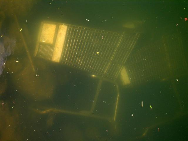 """Carts Underwater (Miami, FL.), 2008. From the series """"Found Objects""""."""