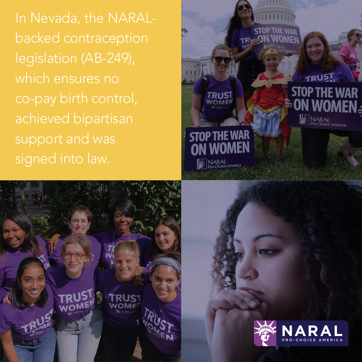 BF_Work_gallery_naral3.jpg