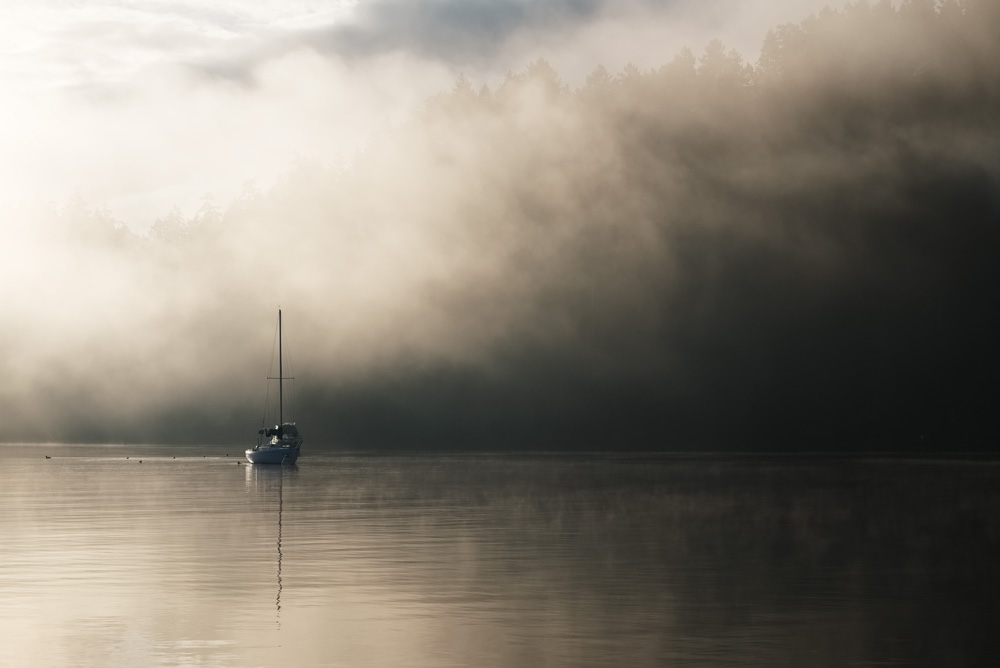 Rising mist at Browning Harbour
