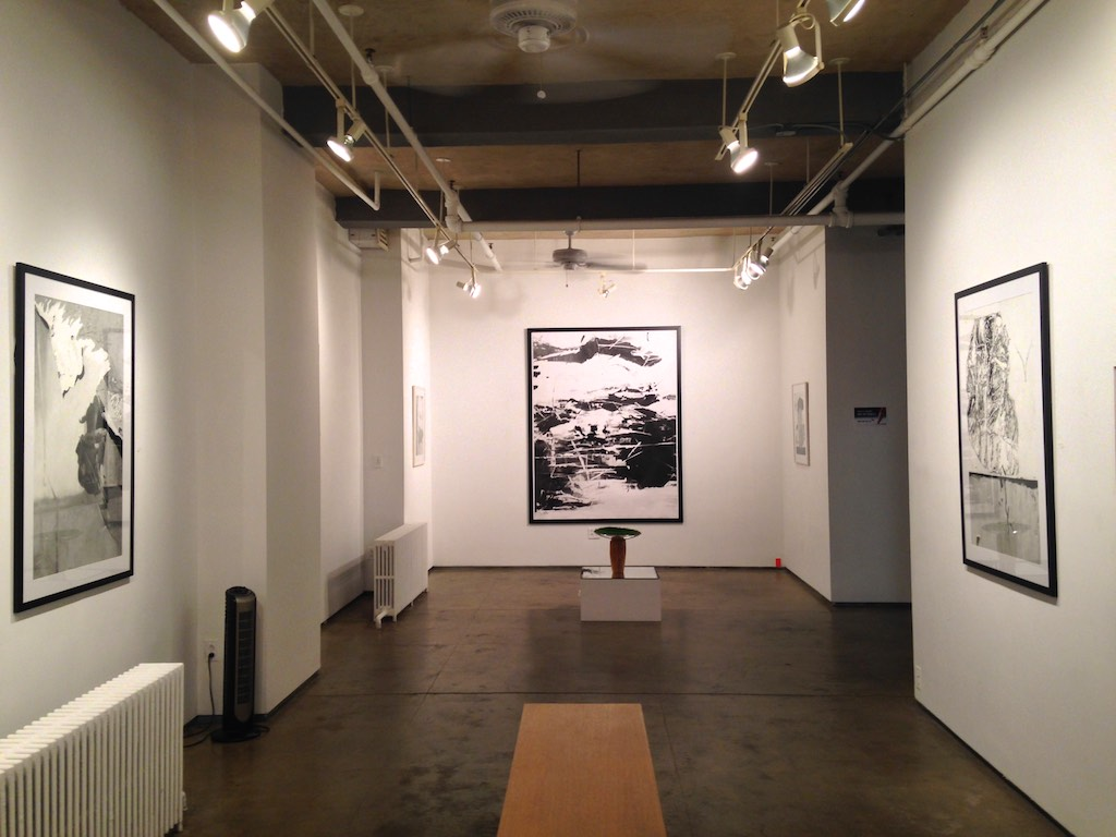 Solo exhibition at Denise Bibro Gallery 2015