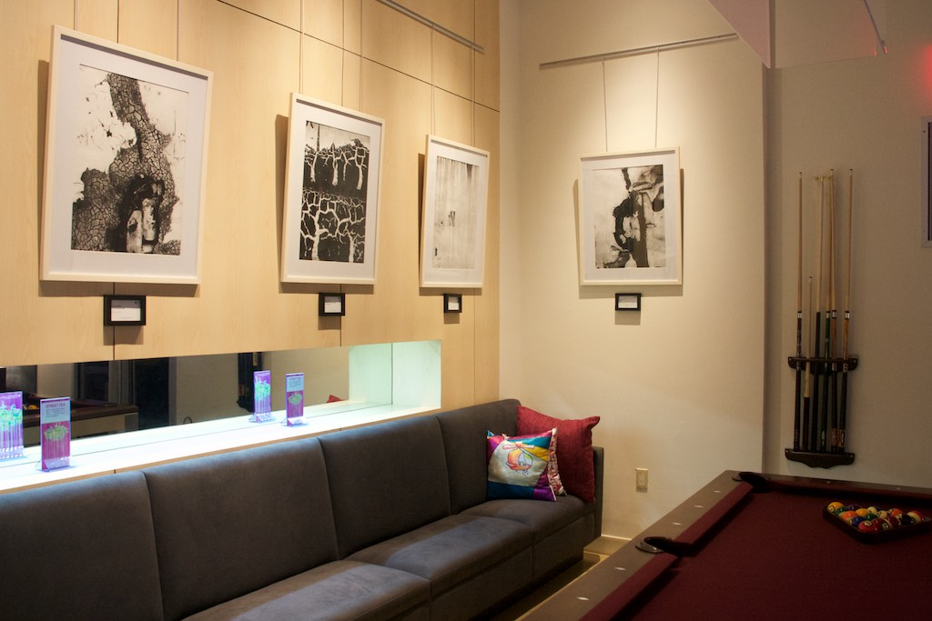 Exhibition at ALoft Hotel August 2015- February 2016