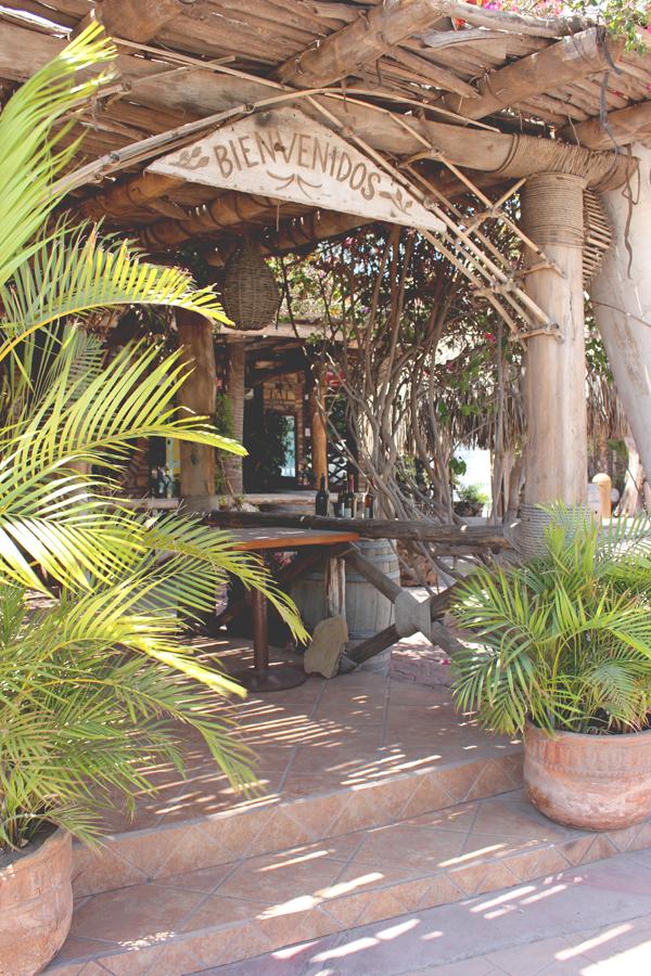 activities-villa-del-palmar-loreto-18.png