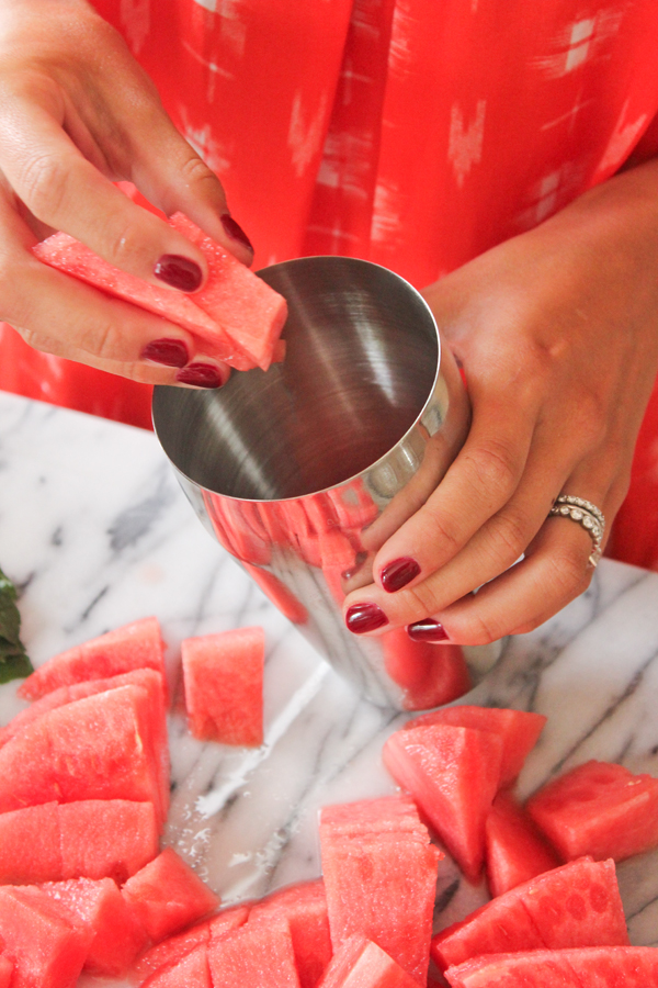 watermelon_champagne_cocktail_7.jpg