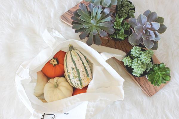 pumpkin-succulent-vase-diy-2.png