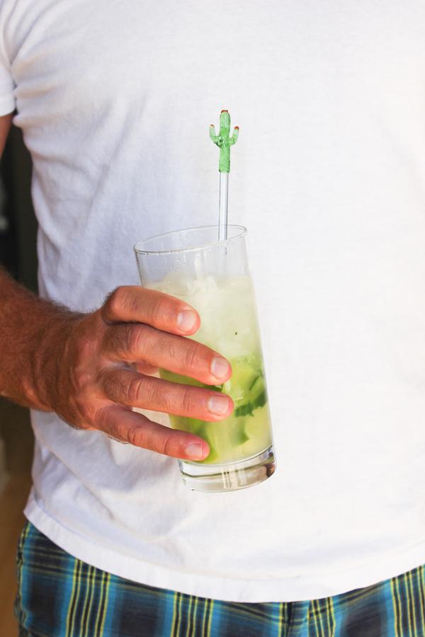 cocktail_recipe_6.jpg