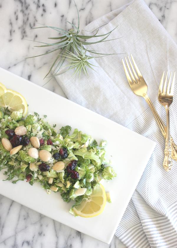 summer-salad-recipe-5.png