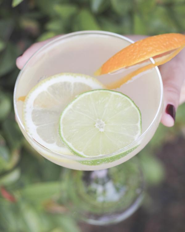 tangerine-twist-cocktail-recipe-3.png