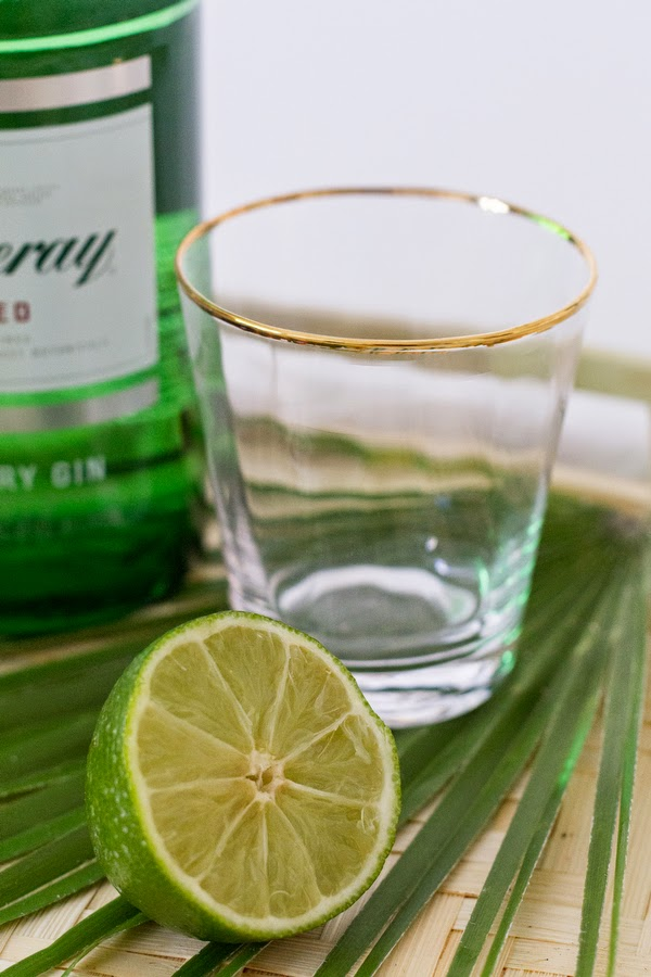 Coconut-Water-Gin-Tonic-7.JPG