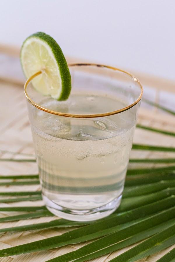Coconut-Water-Gin-Tonic-1.JPG
