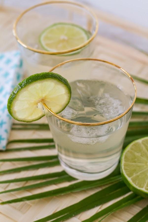 Coconut-Water-Gin-Tonic-3.JPG