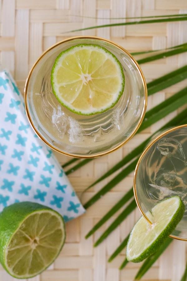 Coconut-Water-Gin-Tonic-4.JPG