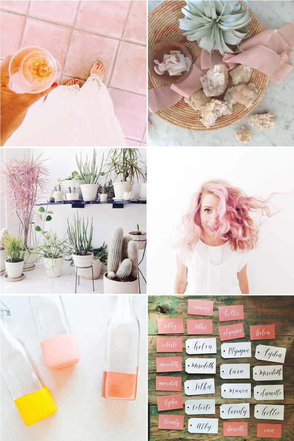 dusty-rose-color-inspiration.png