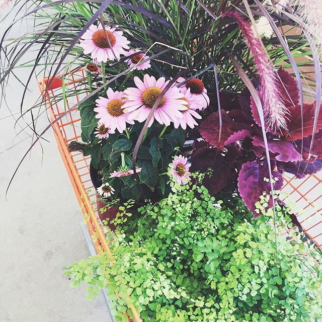 Flower shopping | A Fabulous Fete