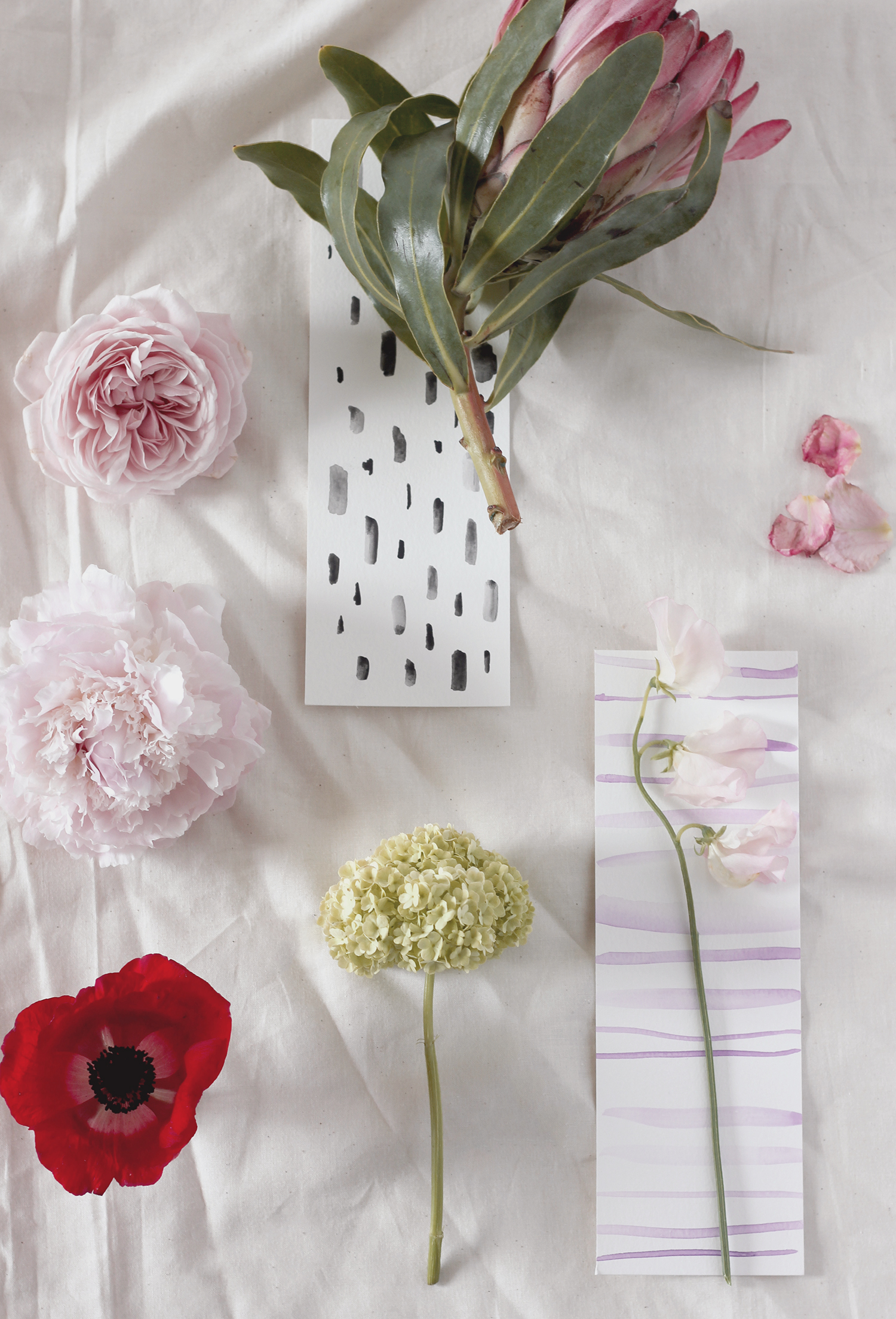 Tips on flowers to use in the spring   A Fabulous Fete