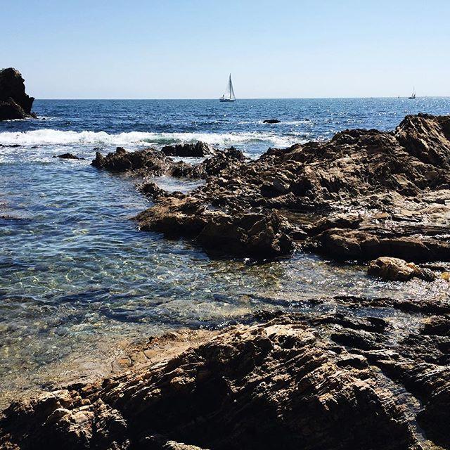 Sail boat watching in Newport Beach, CA | A Fabulous Fete