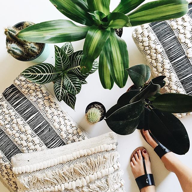 Quick summer house update with new pillows and plants | A Fabulous Fete