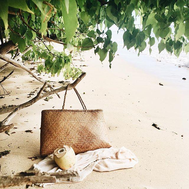 coconut-water-barbados.jpg