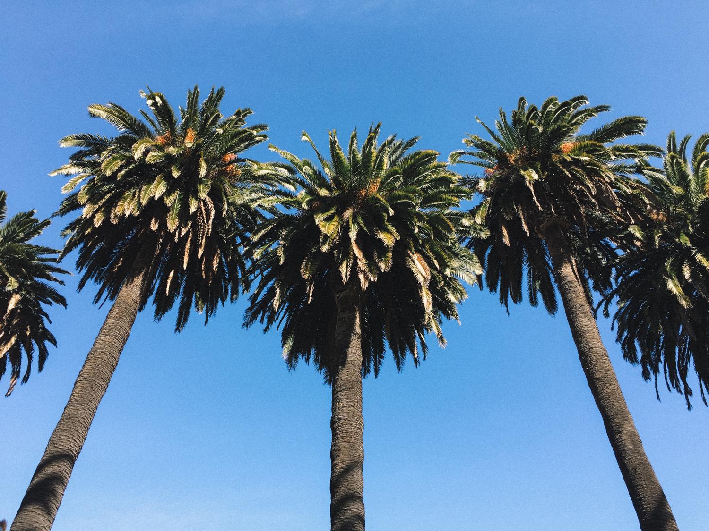 My picks for 24 hours in Santa Barbara | A Fabulous Fete