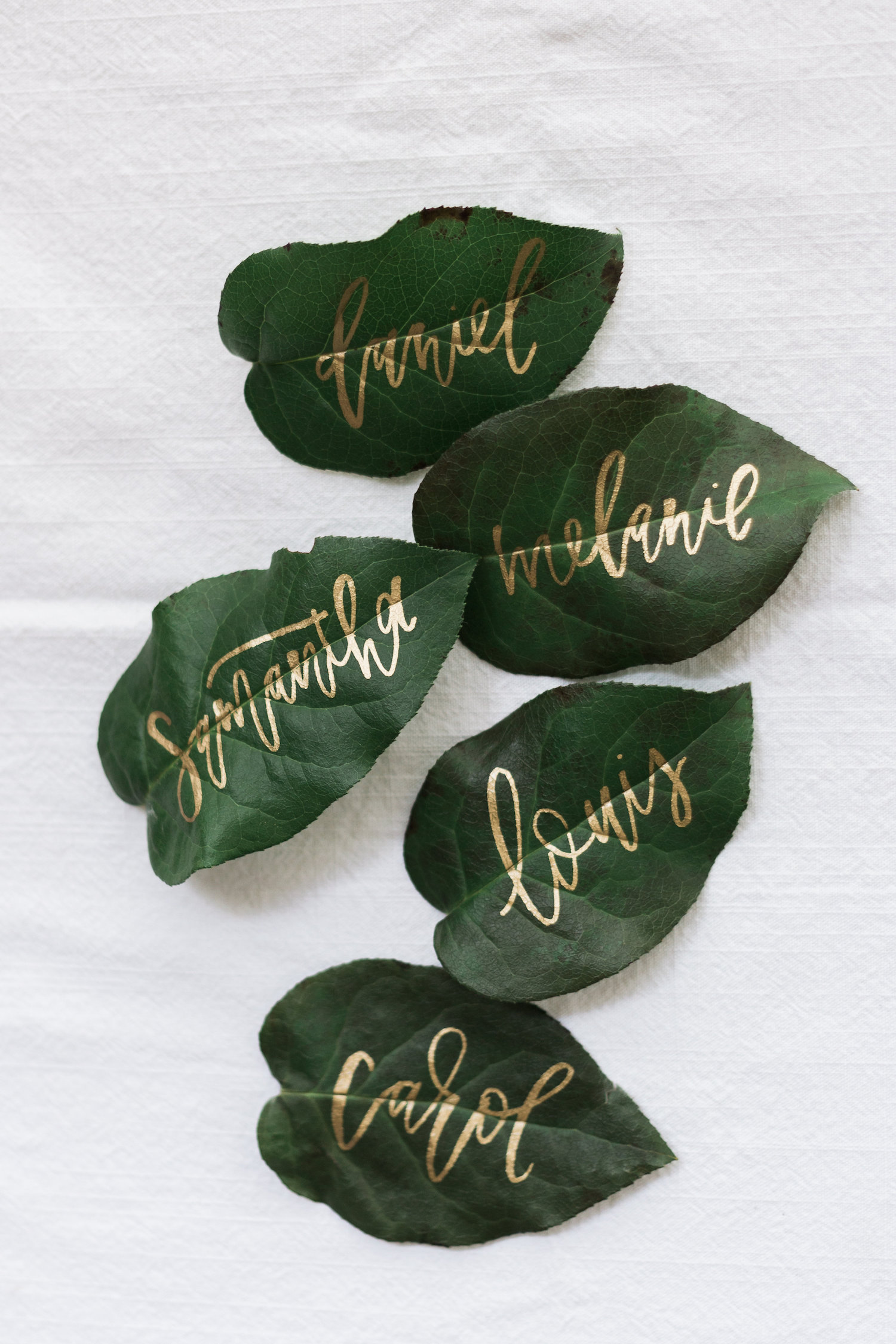 Modern Calligraphy Summit 2.0 registration is open! Learn how to letter everything BUT paper, like these leaf place cards! | A Fabulous Fete