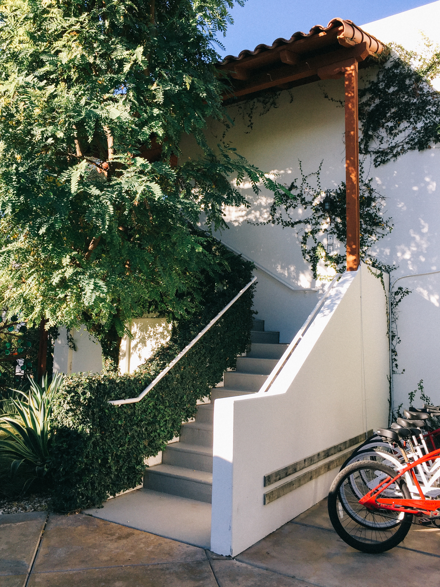 The best way to get around in palm springs | A Fabulous Fete