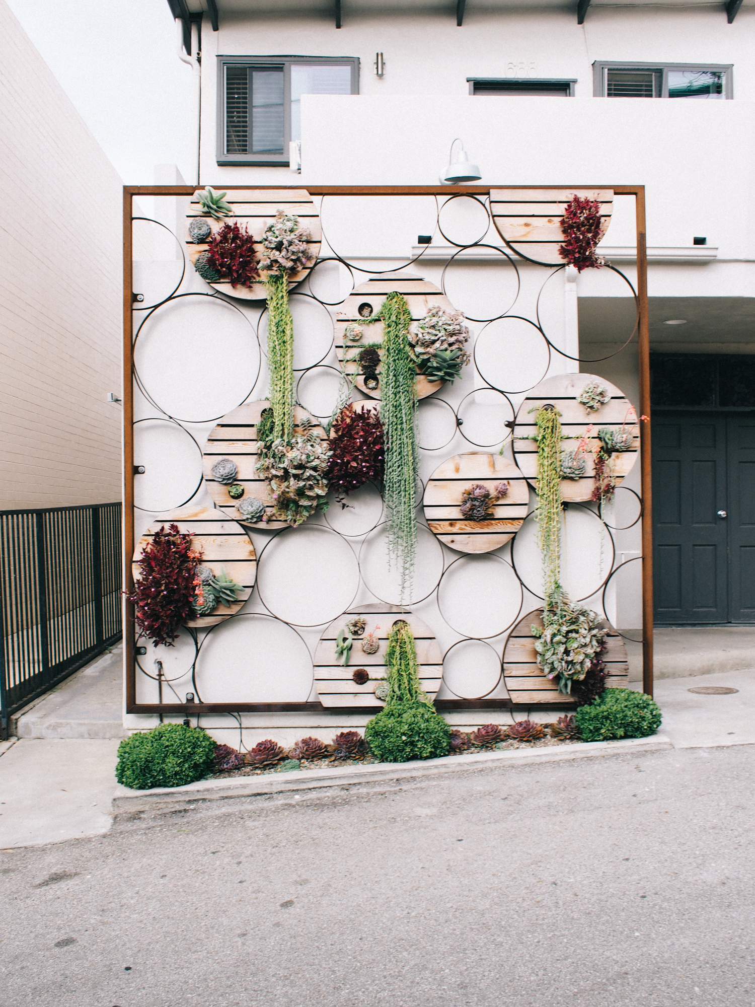 This cute little succulent wall is a must see in Laguna Beach! Right outside of Pacific Edge Hotel | A Fabulous Fete