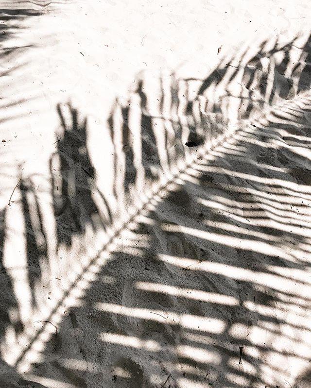 kobimaguire-9.jpg
