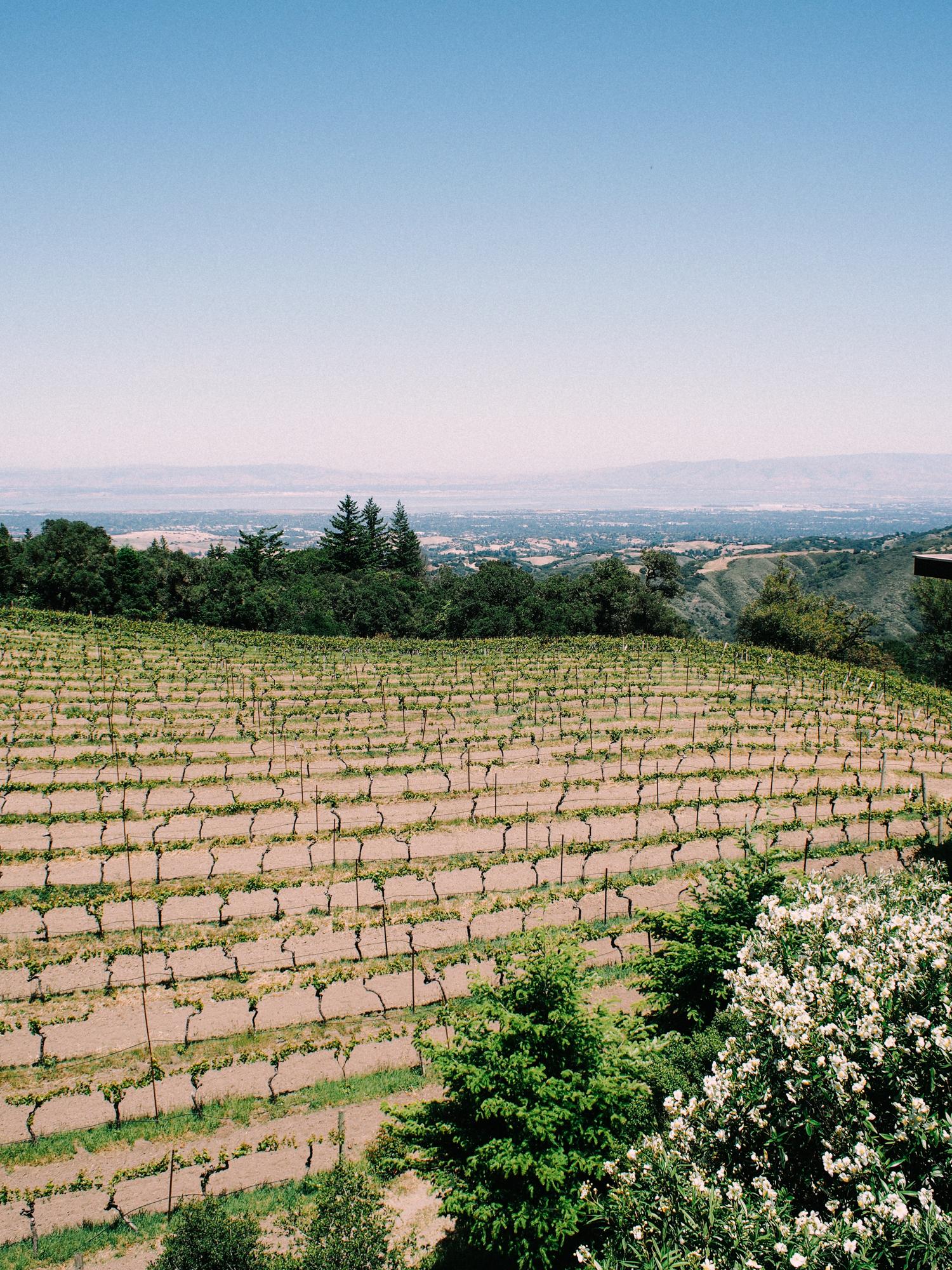 Winery in Half Moon Bay | A Fabulous Fete