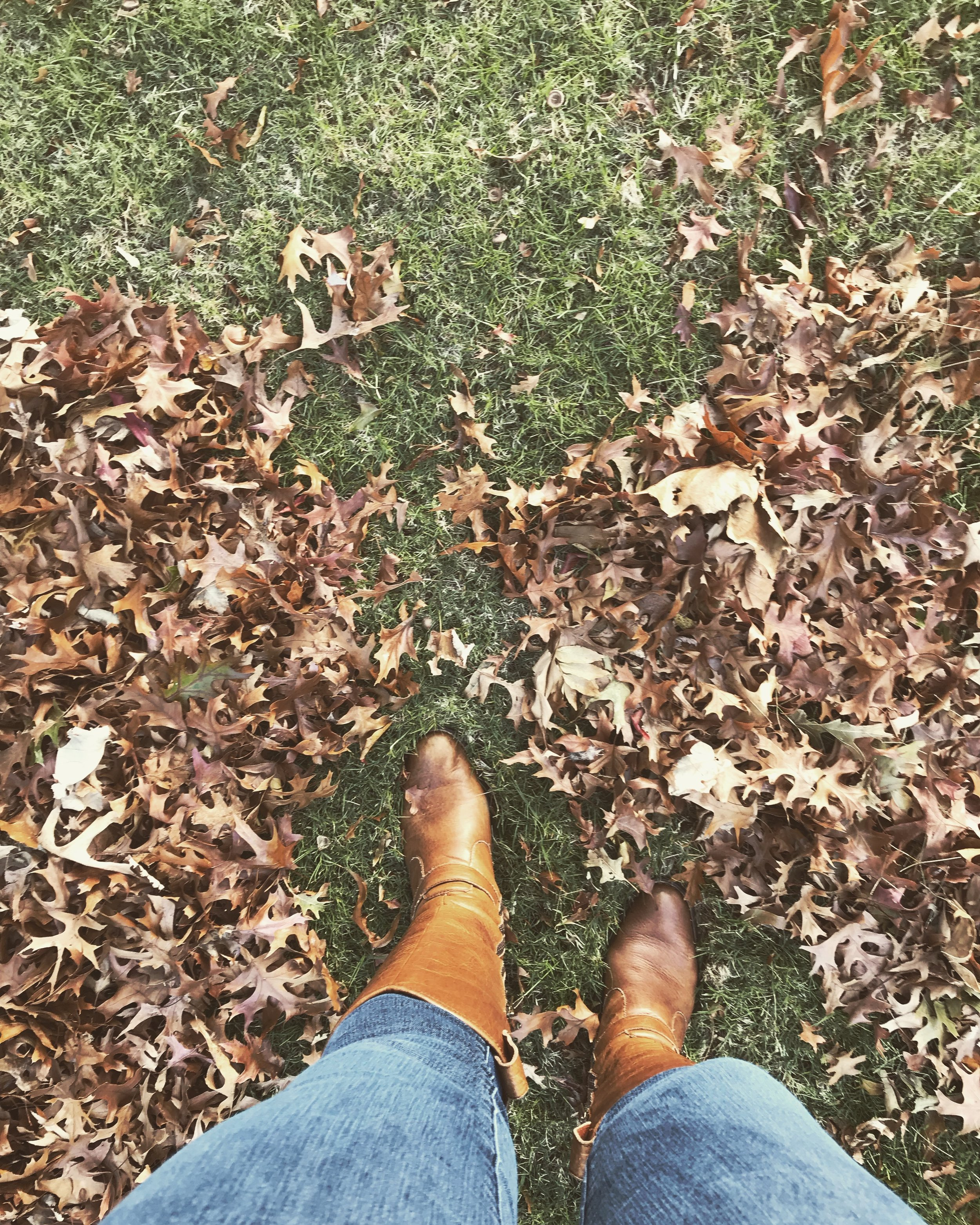 The leaves are officially everywhere and the boots are out of their boxes! It's fall for certain!