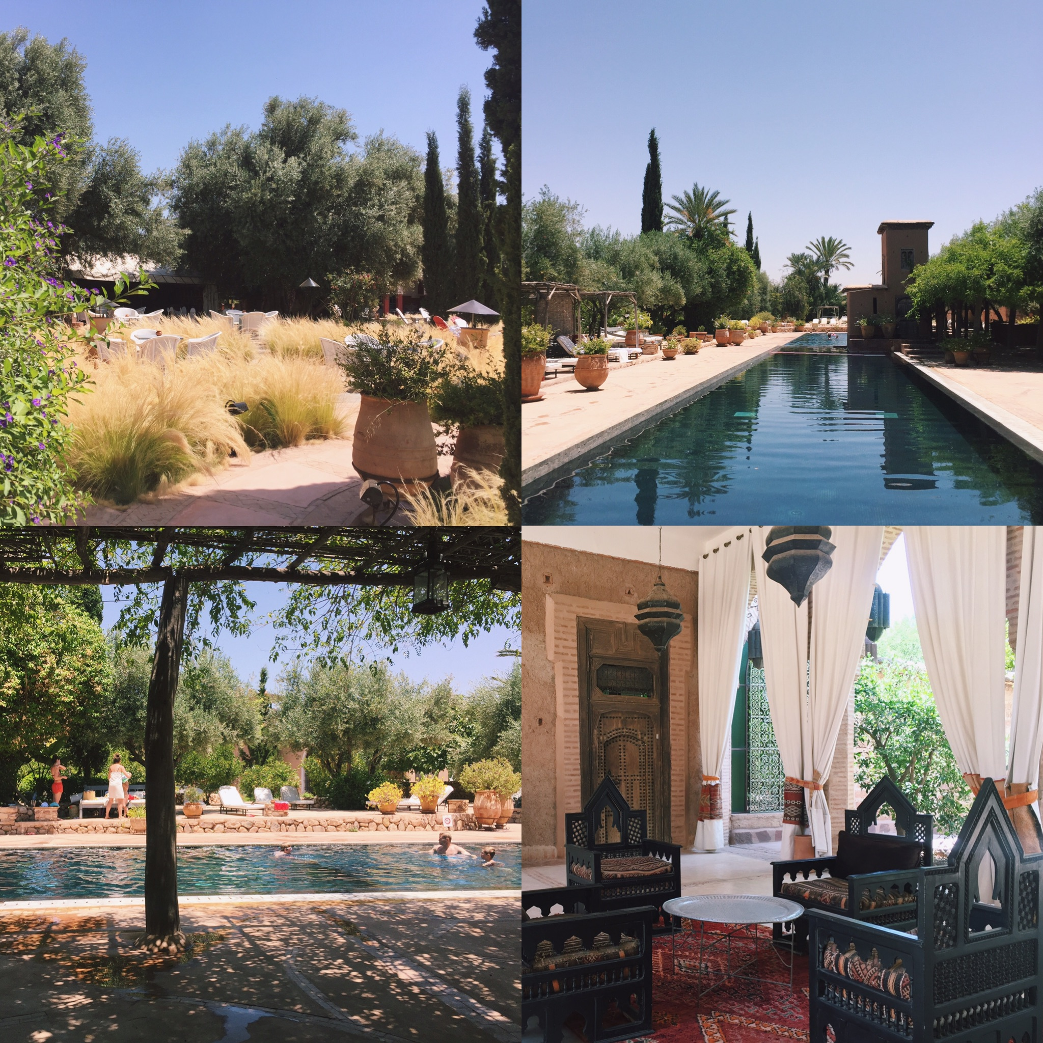some snaps from the beautiful Beldi