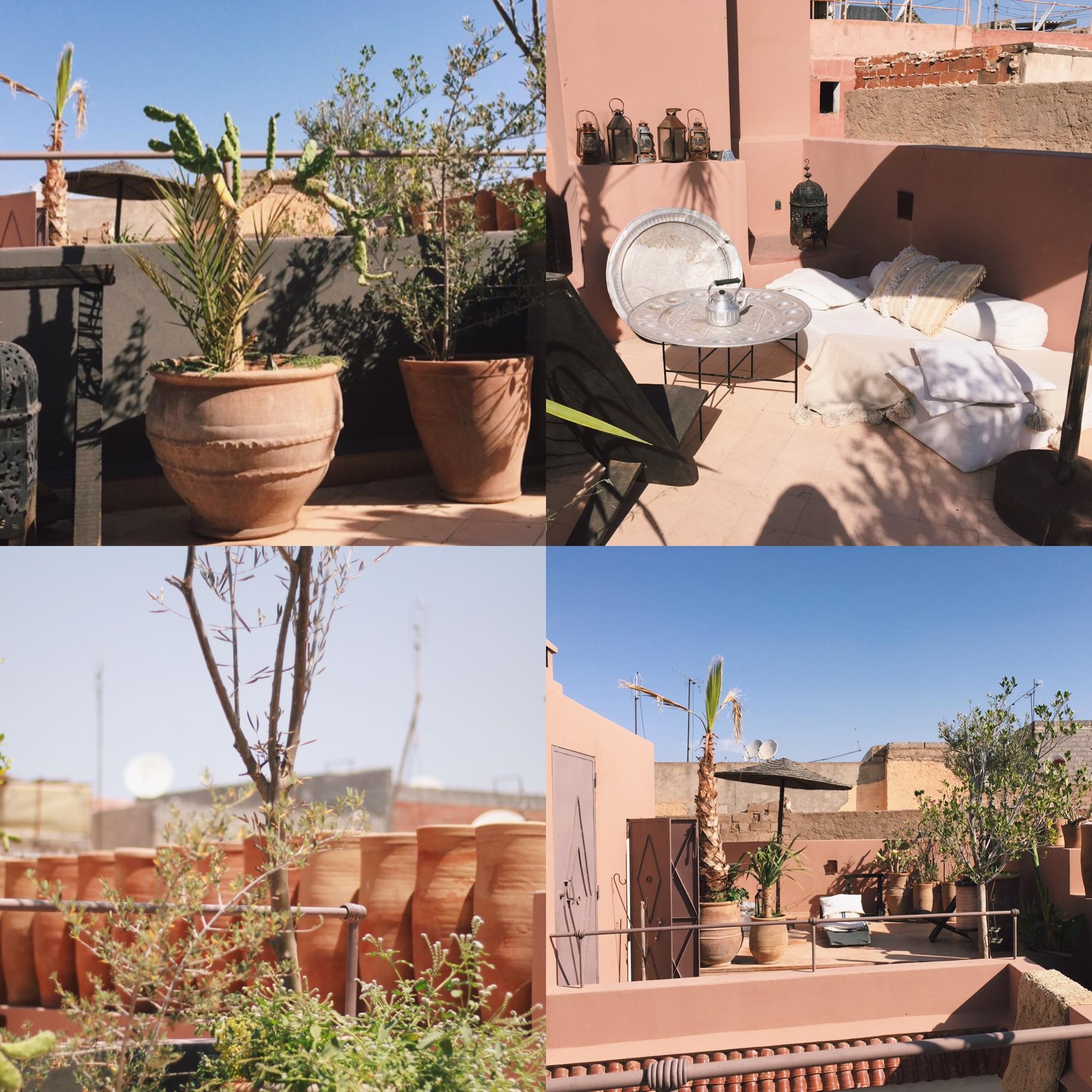 absolute rooftop garden goals