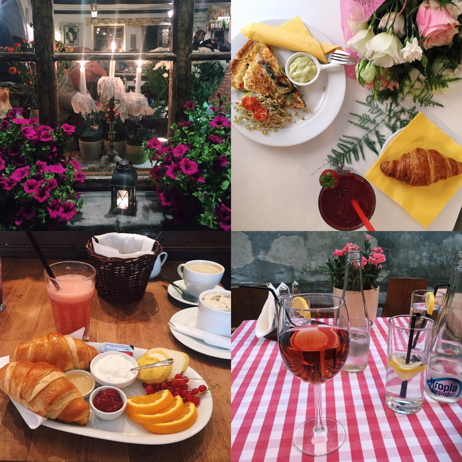 Windows of Gospoda Kwiaty, breakfasts and some summer rose outdoors