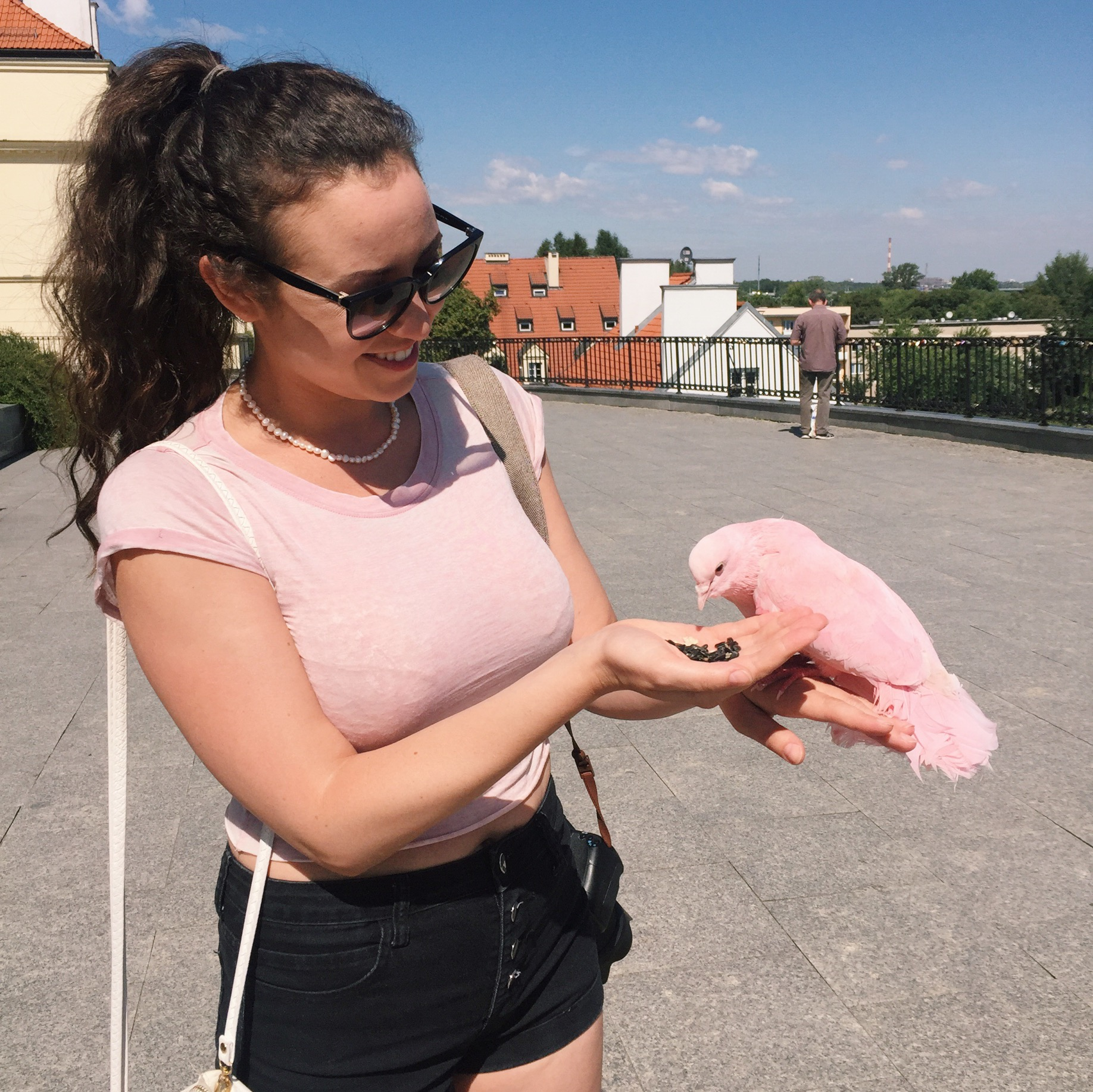 making friends with a matching pigeon. I love making new animal friends :)