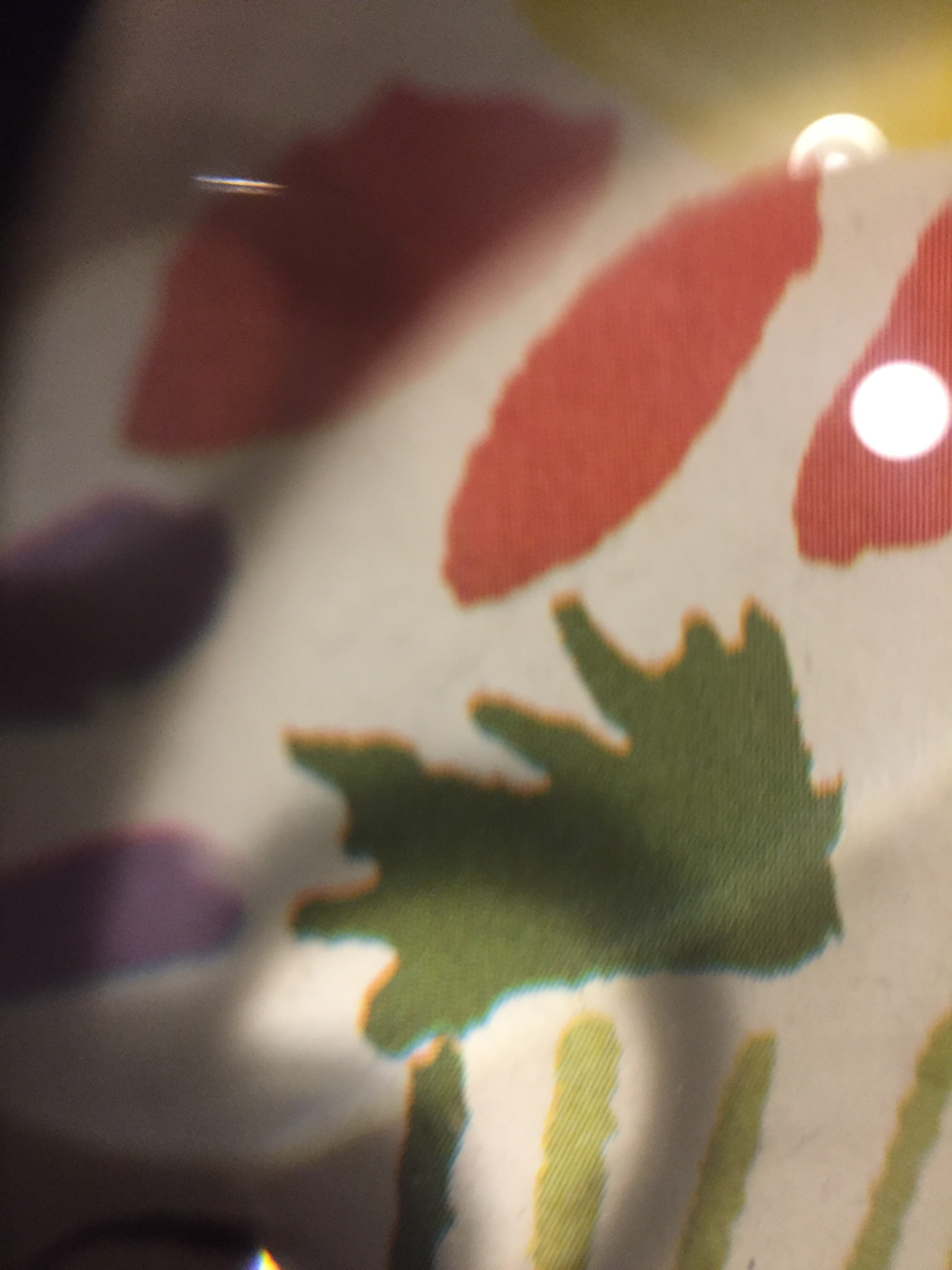 see the dots? Picasso print. The printing process creates dots which kind of vibrate when they come into focus. This pic is through my magnifying glass.