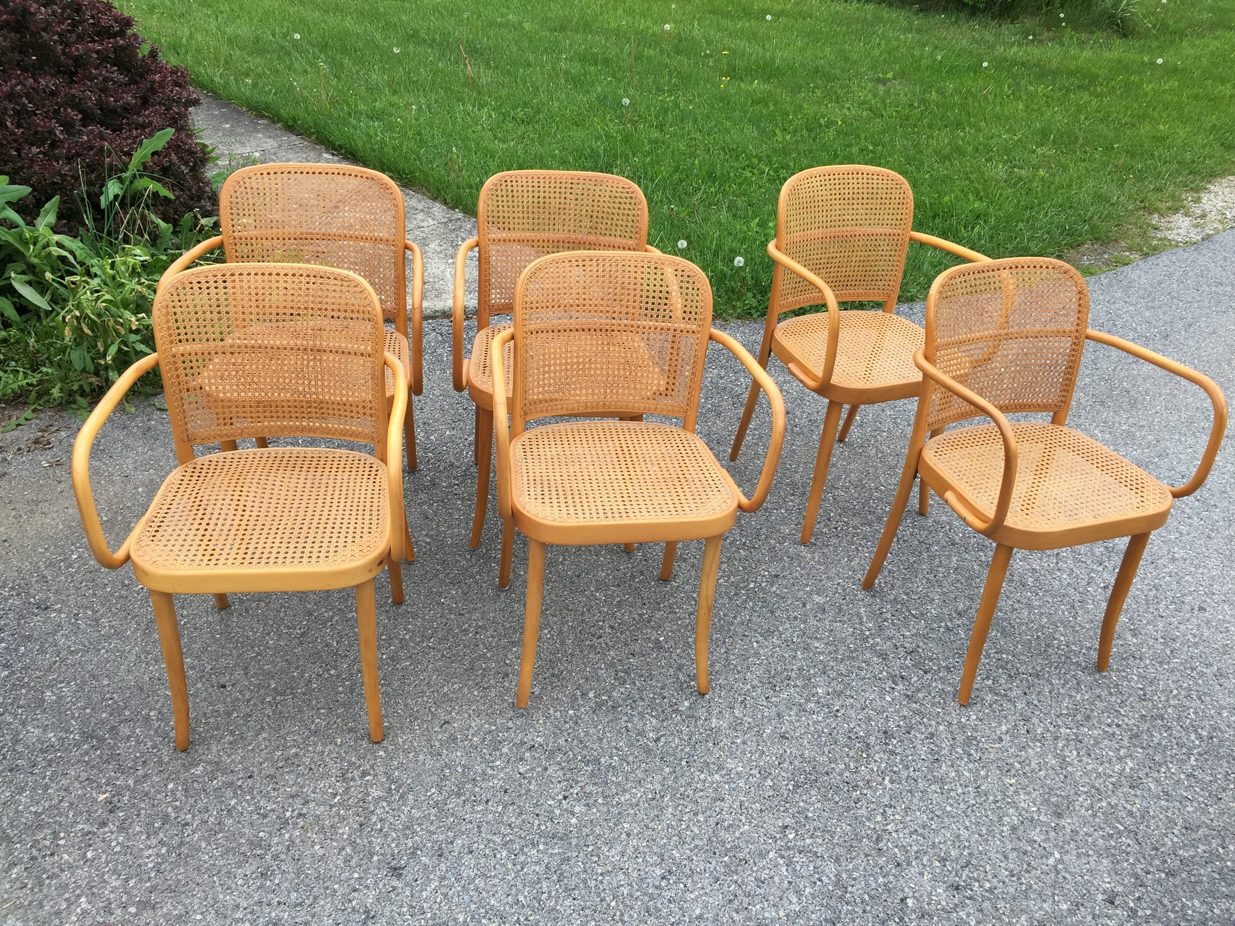 Blond beech Thonet 811 arm chairs.  designed by Josef Hoffmann/Josef Franck in 1930s.  This is an early set as noted by the lack of extra leg supports that were added to later models.  Beautiful hand caned seats and backs and in fantastic condition.  I will be glueing up a few wobbly front legs (reason additional supports were added) you may periodically have to repeat this as they loosen up but an ounce of prevention will keep them stellar.  They are super lightweight, simple, yet gorgeous in design. Made in Thonet's Czechoslovakian plant, imported by US IMPORTER Stendig and stamped, stickered accordingly. You will find Thonet's bentwood pieces in museums all over the world as Michael Thonet devised and perfected the stream bending process.  Here's a great chance to obtain a large matched set of these great artifacts!