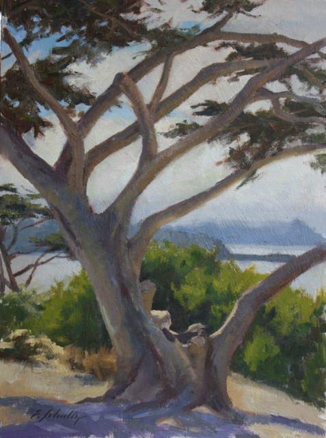 """Statuary Cypress 12x16"""" $550"""