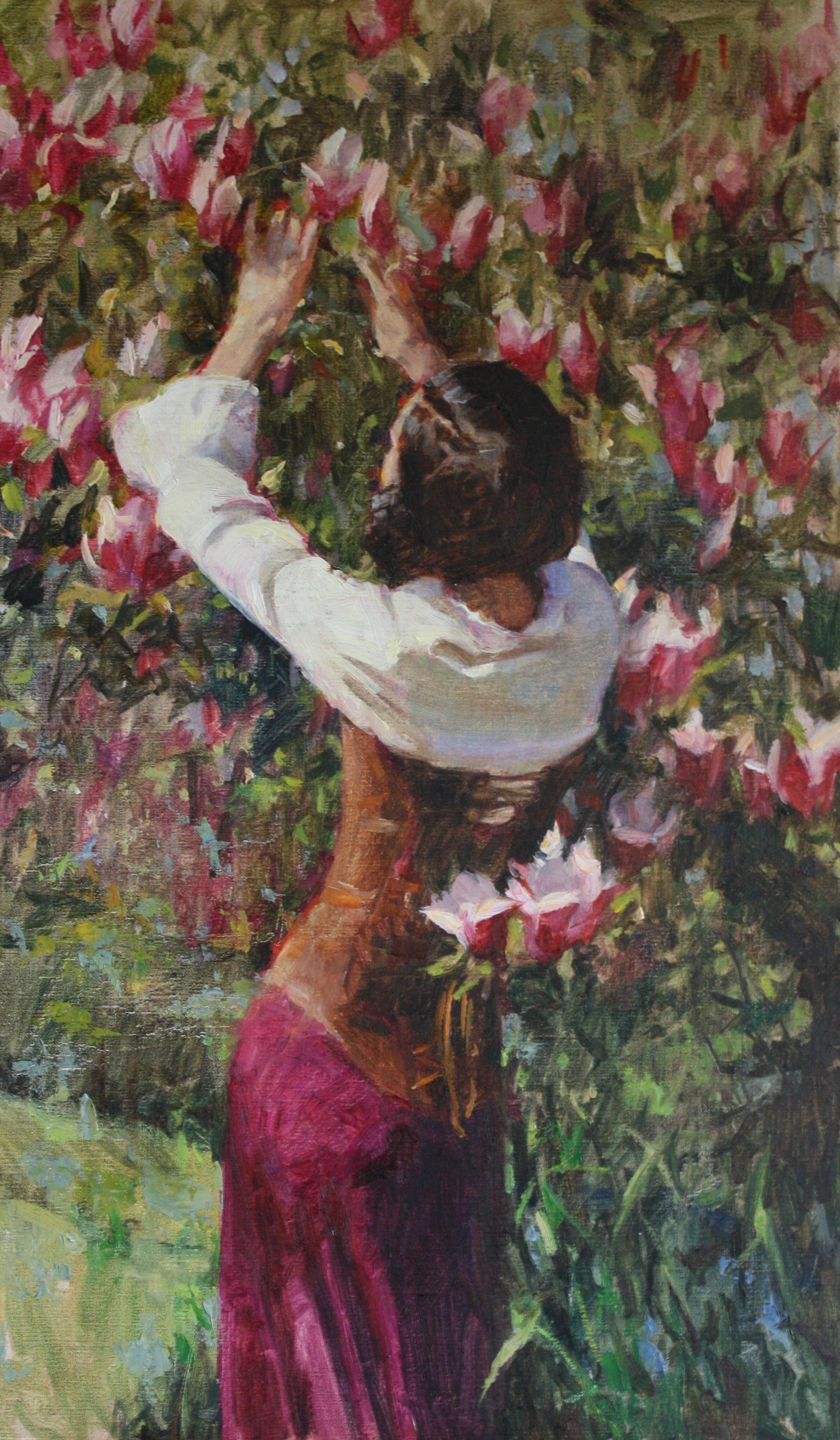 """""""The Tulip Magnolia Tree"""""""