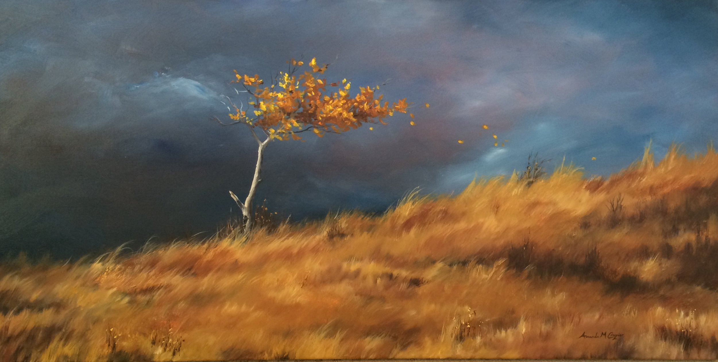Storms of Autumn