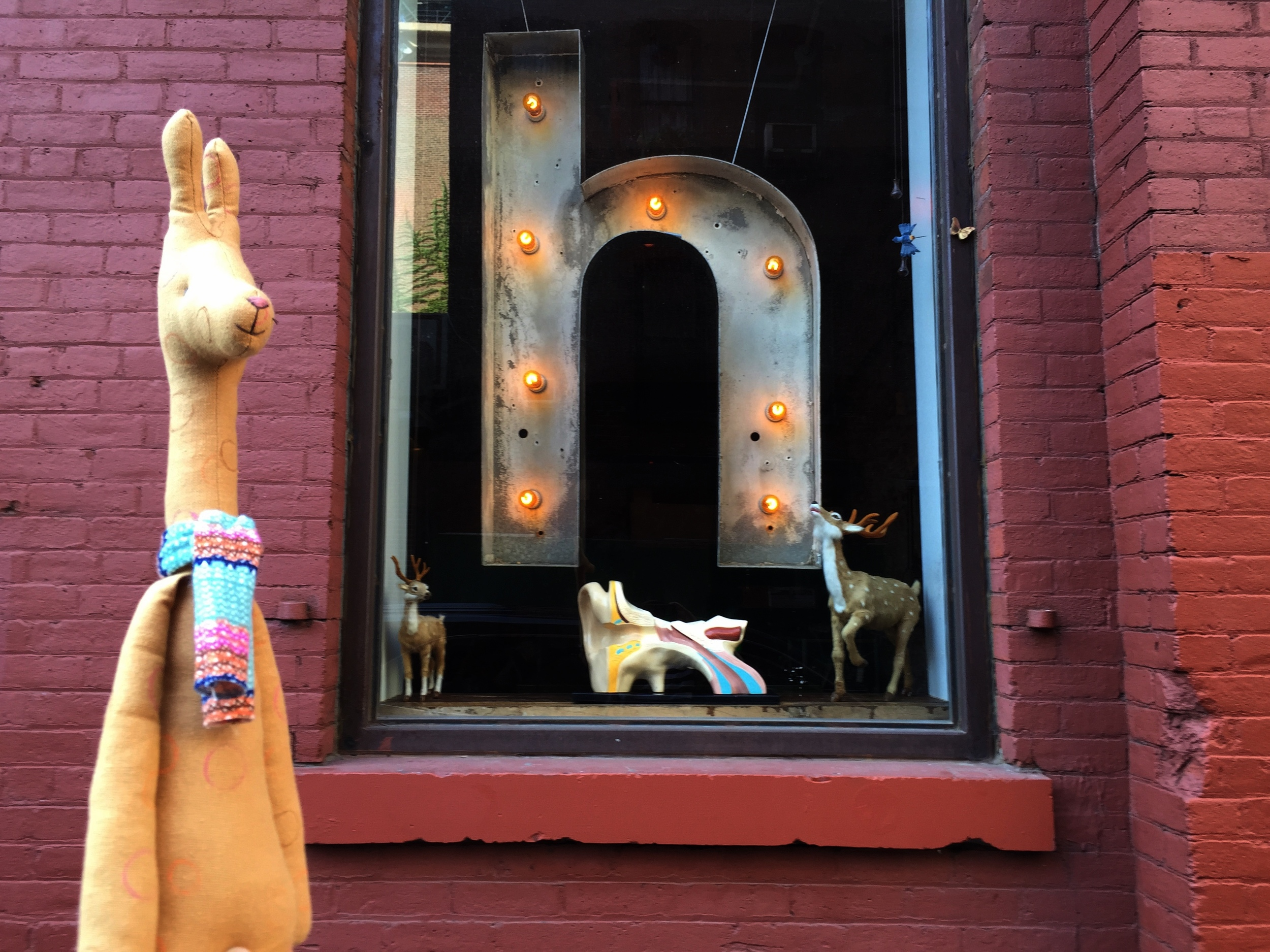 Taken giraffe for walk in DUMBO, Brooklyn. I think he will fit perfectly well with this window display.