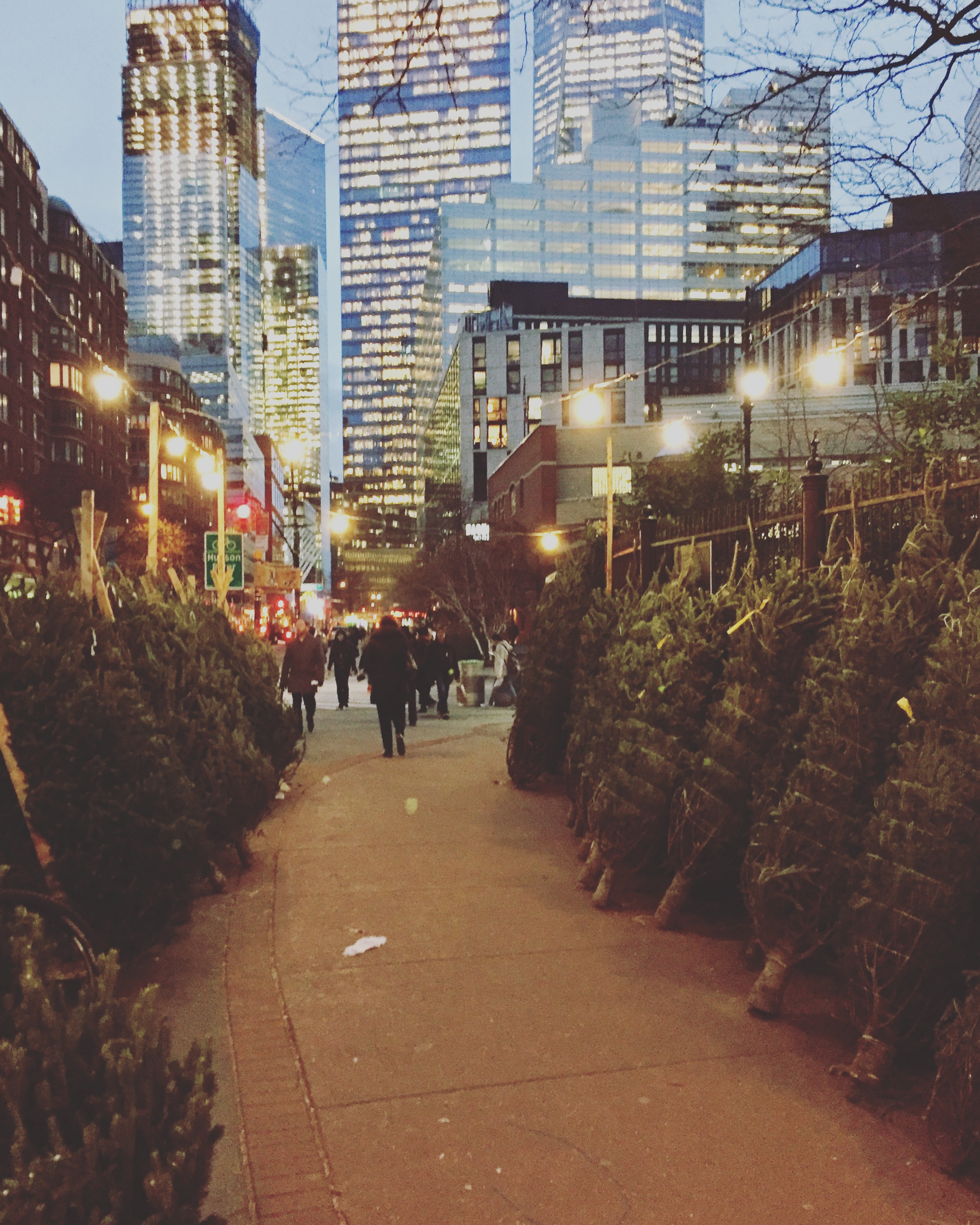Grab a Christmas tree near SoHo. What a great view to Lower West Manhattan. If you stayed long enough, you might run into a celebrity nearby.