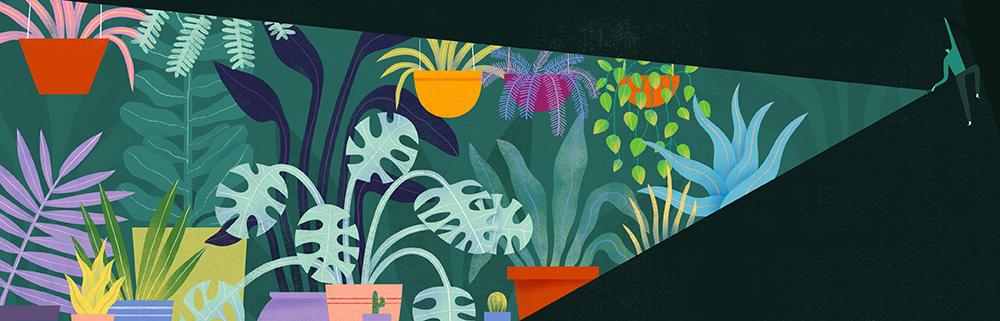 Etsy_World of Etsy_Spot Illustration_Charming Gardens_Mark Conlan