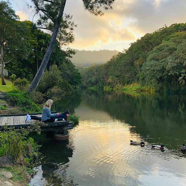 The perfect billabong to watch turtles swim and chat at sunset. Gold Coast Hinterland beauty never fails to inspire and delight. #hinterland #goldcoast #canungra #billabong #sunset #countryside #freshwaterturtles  #australiancountry @historicrivermill @visitscenicrim @goldcoast