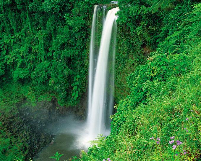 SUP Wilderness Adventures Samoa (4).jpg