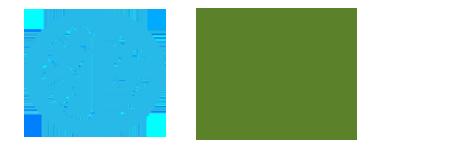 logo SAI 2019.png