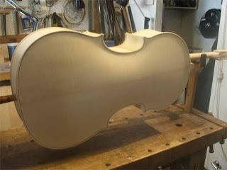 cello5back.jpg