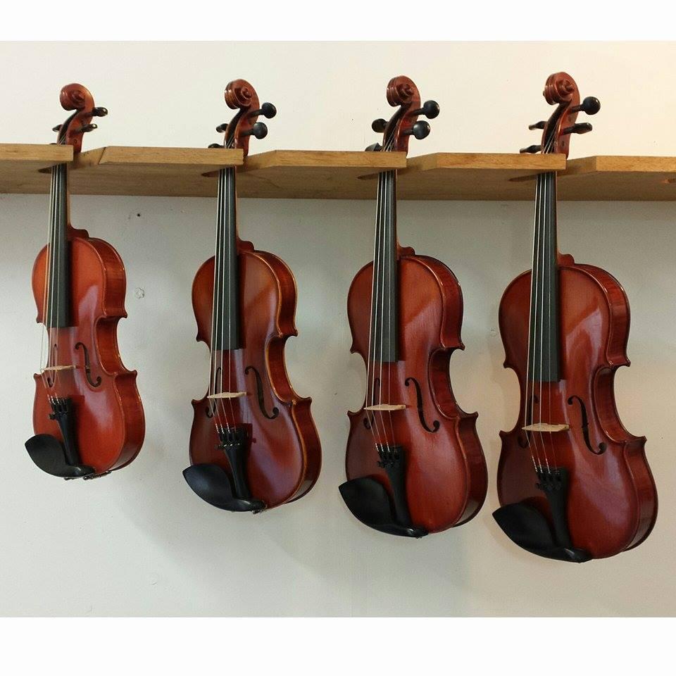 APS Student Violins: For the aspiring student