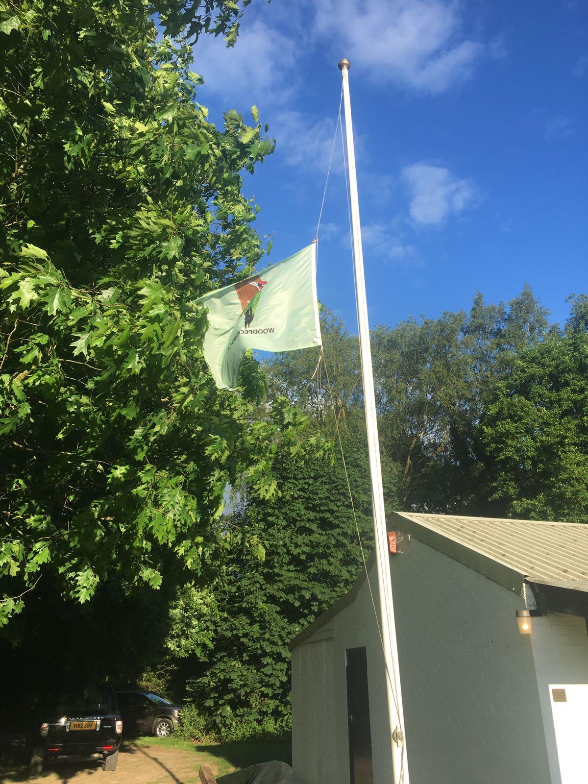 headley flag peckers
