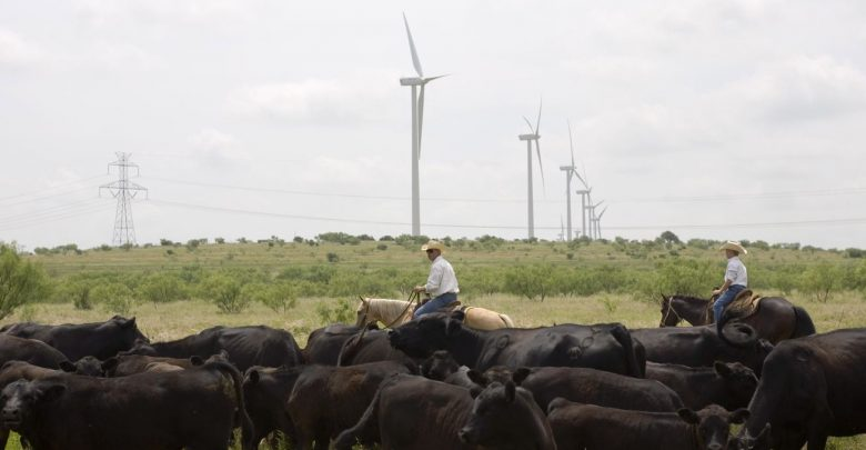 The-best-place-in-America-to-ramp-up-renewable-energy-could-be-Texas-780x405.jpg